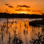 sunset De Peel Deurne Harrie Jegerings