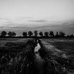 sunset De Peel Deurne Harrie Jegerings zwart wit foto