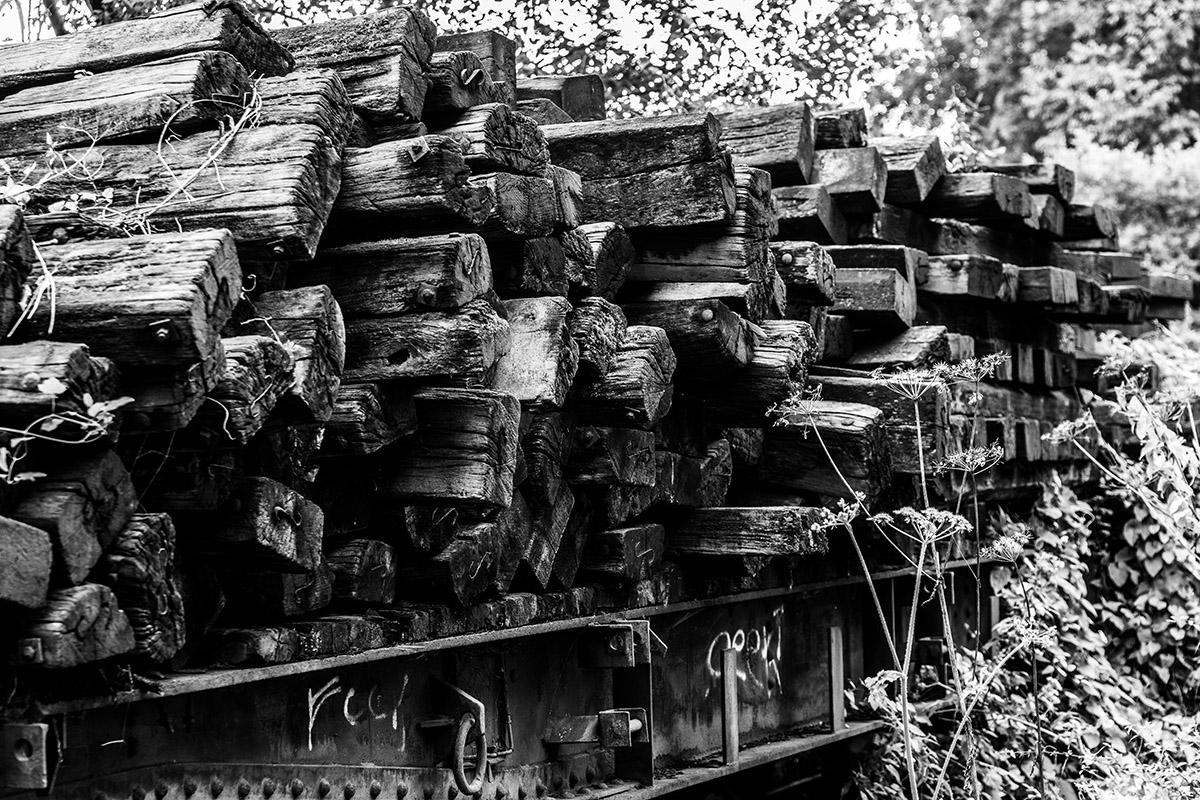 natuurfotografie-garehombourg-harriejegerings